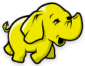 Apache Hadoop & Big Data Logo